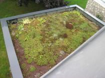 Une toiture végétale: étape par étape