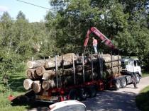 La filière bois française en manque de vision ...