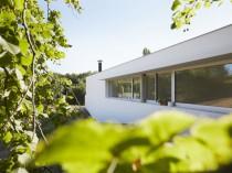 Une villa toulousaine s'élève entre les arbres