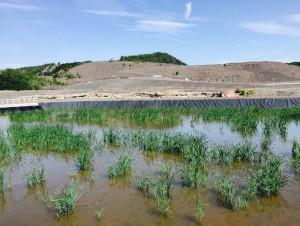 Une installation écologique pour traiter les eaux ...