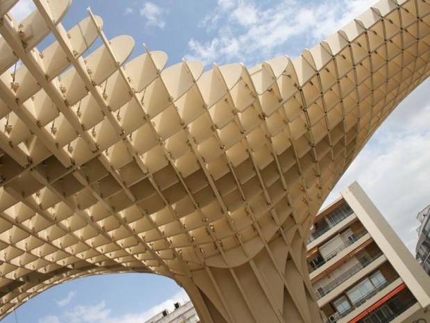 Six champignons de bois au cœur de Séville ...