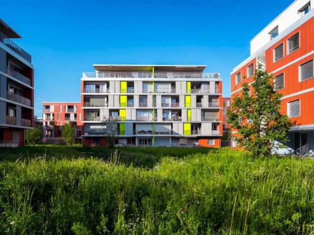 """Découverte du premier éco-quartier """"Eikenøtt"""" livré à Gland (Suisse) en 2014 par Losinger Marazzi, filiale suisse de Bouygues Construction"""