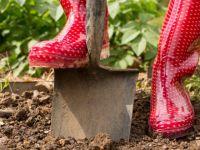 Aménager son jardin à l'aide d'un professionnel