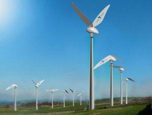 Tyer Wind