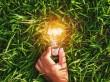 Les innovations dans les énergies bas-carbone en ...