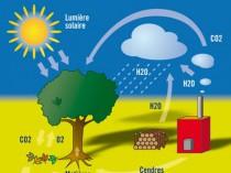 Metz va se chauffer à la biomasse