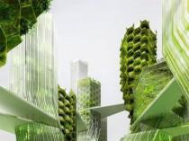 L'Etat subventionne un projet de micro-algues en ...