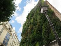 Plus de 200 lieux seront végétalisés en 2015 à ...