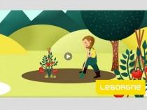 Des vidéos en motion design pour Leborgne