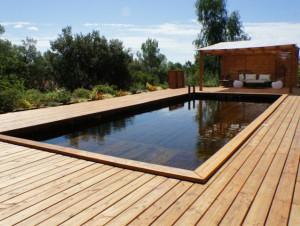 Une piscine familiale tout en bois