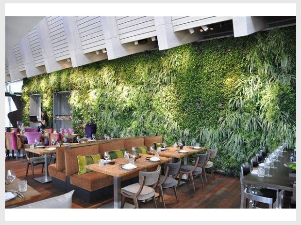 Un restaurant adopte un mur végétal en guise de décoration (diaporama)