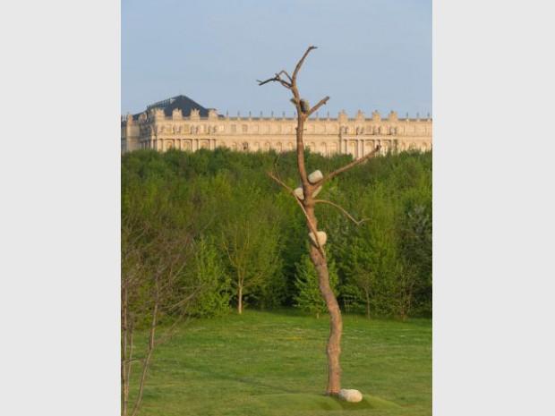 Exposition Penone Versailles jardin troncs