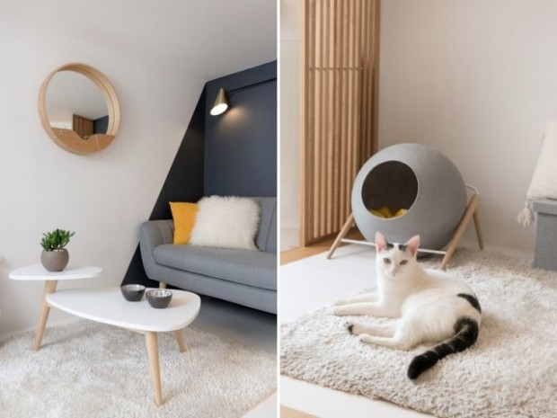 Un intérieur plein de douceur… pensé aussi pour le chat