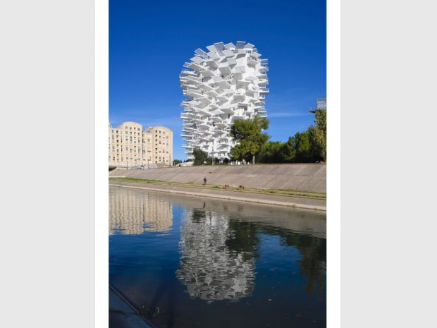 L'Arbre blanc - Montpellier