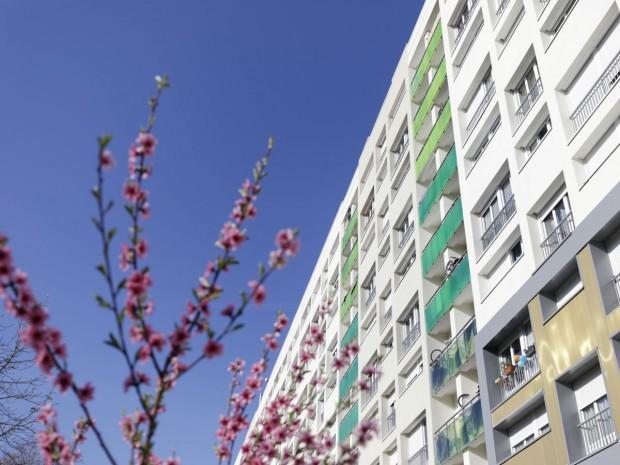 Réhabilitation de 303 logements sociaux Gergovie (Paris)