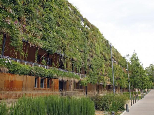 Végétalisation bâtiment vert